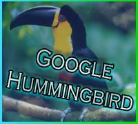 ハミングバードアップデート-Google鳥さん導入してました-