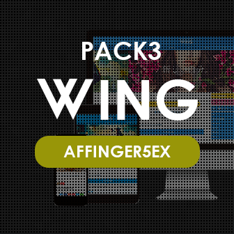 WING PACK3